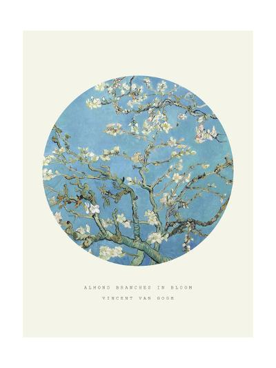 Old Masters, New Circles: Almond Branches in Bloom, San Remy, c.1890-Vincent van Gogh-Giclee Print