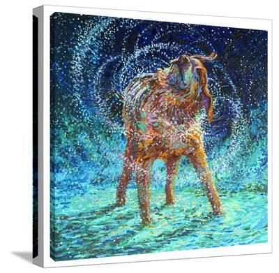 Old Rem-Iris Scott-Gallery Wrapped Canvas