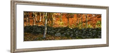 Old Rock Wall-Brenda Petrella Photography LLC-Framed Giclee Print