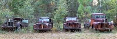 Old Rusty Cars and Trucks on Route 319, Crawfordville, Wakulla County, Florida, USA--Photographic Print
