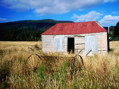 Old Shed and Farm Equipment Near Cloudy Bay-Holger Leue-Photographic Print