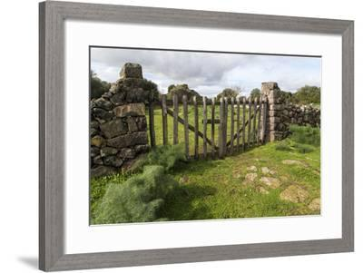 decorative bamboo fence stock photo image of ancient.htm old stone wall and wooden fence keep in sheep living at parco  old stone wall and wooden fence keep in