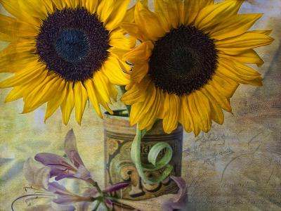 Old Tea Can-Bob Rouse-Giclee Print