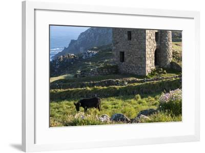 Old Tin Mine Workings, Botallack, Pendeen,Cornwall, England-Paul Harris-Framed Photographic Print
