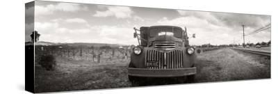 Old Truck in a Field, Napa Valley, California, USA
