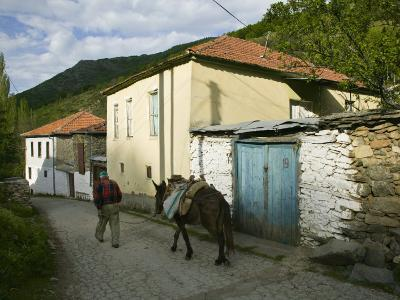 Old Vlach Mountain Village, Maloviste Village, Pelister National Park, Macedonia-Walter Bibikow-Photographic Print