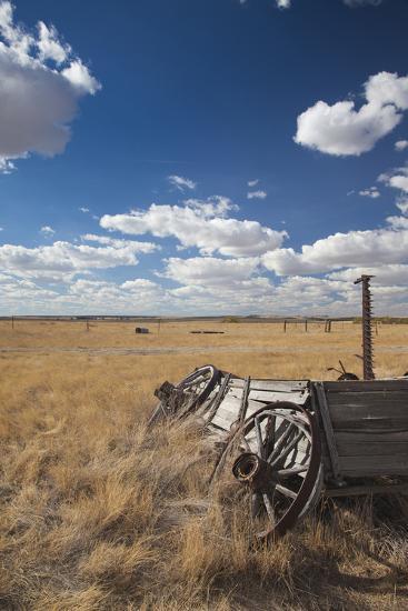 Old Wagon, Prairie Homestead, Cactus Flat, South Dakota, USA-Walter Bibikow-Photographic Print