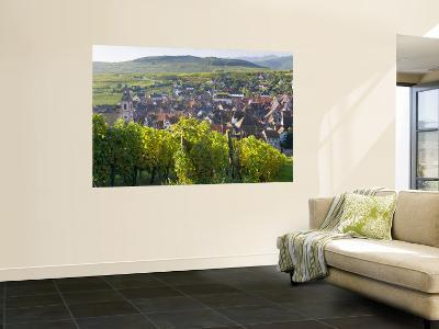 Old Wine Town of Riquewihr and Vineyard, Alsace, France-Peter Adams-Wall Mural