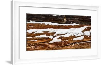 old wooden wall of hut, snowdrift, medium close-up, detail-Martin Ley-Framed Photographic Print