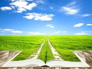 Open Book Of Nature With Way by Olegkalina
