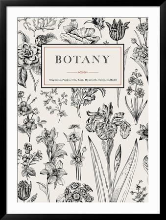 Botany. Vintage Floral Card. Vector Illustration of Style Engravings. Black and White Flowers. by Olga Korneeva