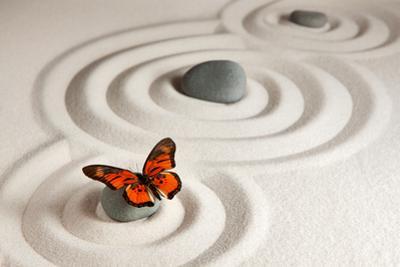 Zen Rocks with Butterfly by Olga Lyubkin