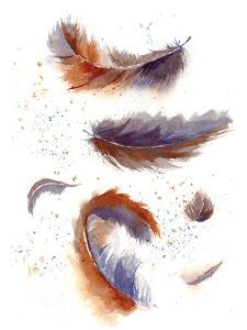 Feather Fiesta by Olga Shefranov