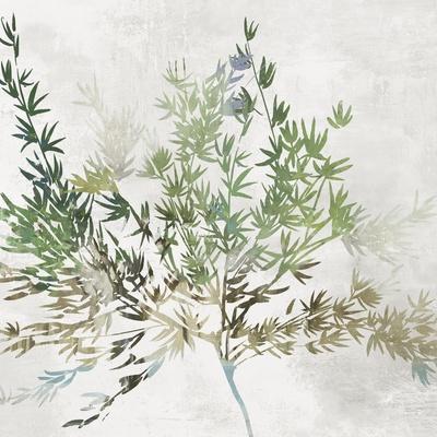 https://imgc.artprintimages.com/img/print/olive-branch_u-l-q1aor7k0.jpg?p=0