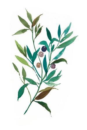https://imgc.artprintimages.com/img/print/olive-i_u-l-pzqdy50.jpg?p=0