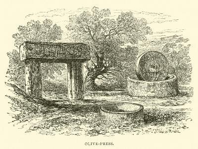 Olive-Press--Giclee Print