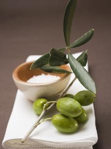 Olive Sprig with Green Olives, Sea Salt in Terracotta Bowl