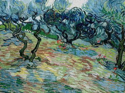 Olive Trees, 1889-Vincent van Gogh-Giclee Print