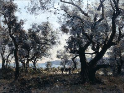 Olive Trees around Cap Martin, 1891-Emmanuel Lansyer-Giclee Print
