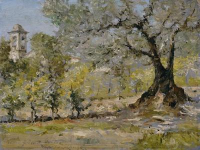https://imgc.artprintimages.com/img/print/olive-trees-in-florence_u-l-o5t1a0.jpg?p=0