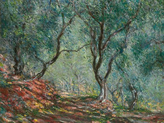 Olive Trees in the Moreno Garden, 1884-Claude Monet-Premium Giclee Print