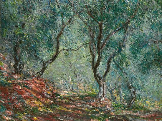 Olive Trees in the Moreno Garden, 1884-Claude Monet-Giclee Print