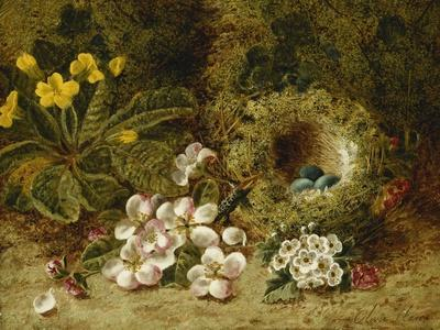 Apple Blossoms, a Primrose and Birds Nest on a Mossy Bank