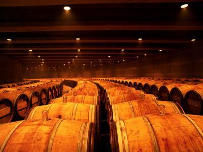 Barrel Room at Opus One, Napa Valley, California
