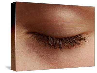 Close-Up of an Eyelash