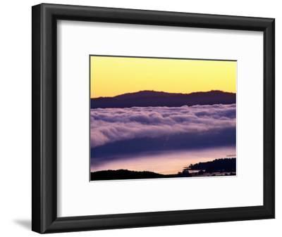 Mist Rolling over Vineyards, Napa, California