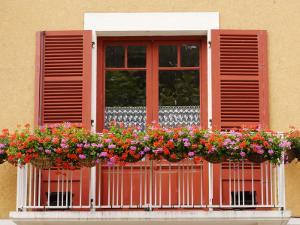 Pots of Geranium Flowers on Window Balcony by Oliver Strewe