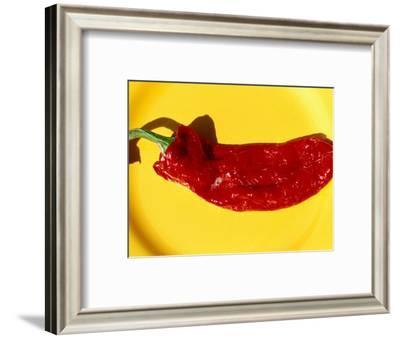 Red Pimento (Chilli Pepper), Spain