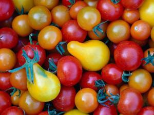 Tomatoes from Ballymaloe Cooking School, Shanagarry, Ireland by Oliver Strewe