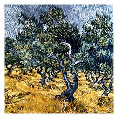 https://imgc.artprintimages.com/img/print/oliveraie-detail_u-l-f7tuh80.jpg?p=0