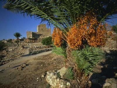 Byblos, Lebanon, Middle East