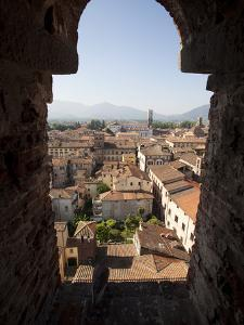 View from the Giunigi Tower, Lucca, Tuscany, Italy, Europe by Oliviero Olivieri