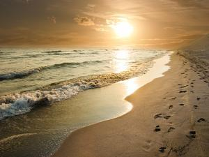 Golden Sunset on the Sea Shore and Footprints in the Sand by ollirg