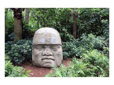 Olmec Head in a Forest--Art Print