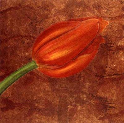 Mystic Tulip