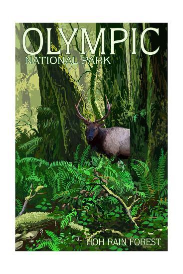 Olympic National Park, Washington - Hoh Rain Forest-Lantern Press-Art Print