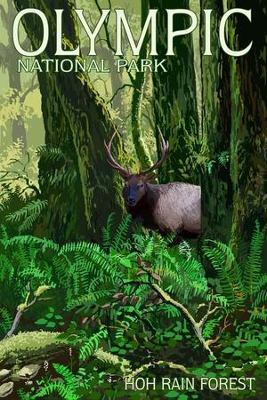 https://imgc.artprintimages.com/img/print/olympic-national-park-washington-hoh-rain-forest_u-l-q1gqs6p0.jpg?p=0