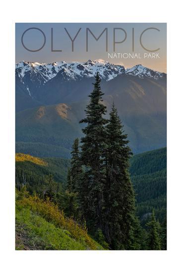 Olympic National Park, Washington - Hurricane Ridge-Lantern Press-Art Print