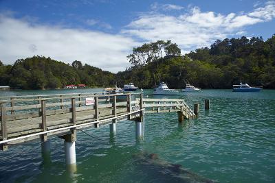Omaha Cove, Leigh, North Auckland, North Island, New Zealand-David Wall-Photographic Print
