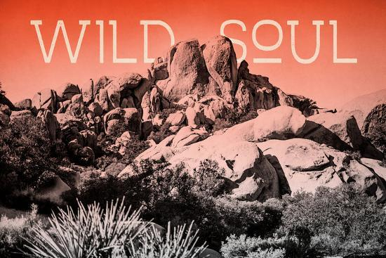 Ombre Adventure II Wild Soul-Elizabeth Urquhart-Photo
