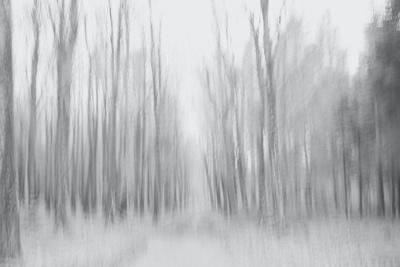 https://imgc.artprintimages.com/img/print/on-a-gray-winter-day_u-l-q1gvjjk0.jpg?p=0