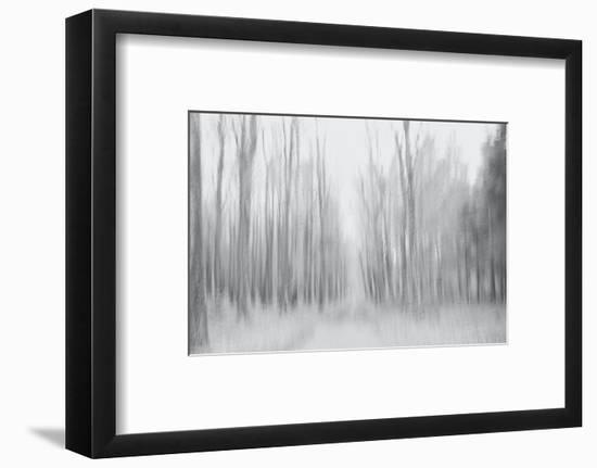On a Gray Winter Day-Jacob Berghoef-Framed Photographic Print