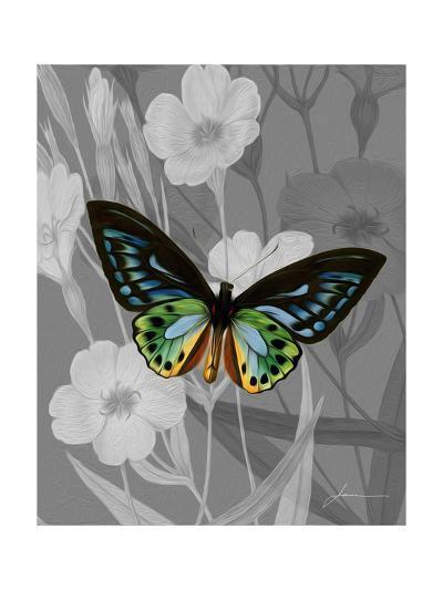 On Display I-James Burghardt-Art Print