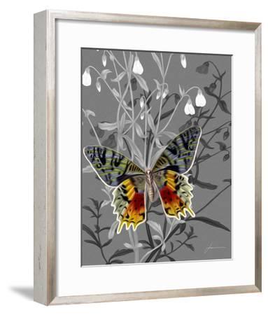 On Display IV-James Burghardt-Framed Art Print