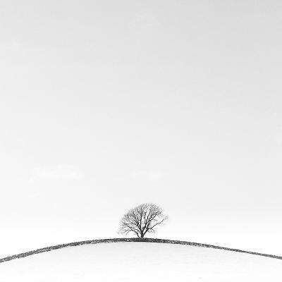 On the Crest-Doug Chinnery-Photographic Print