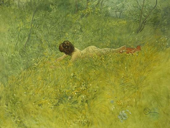 On the Grass; I Grongraset, 1902-Carl Larsson-Giclee Print